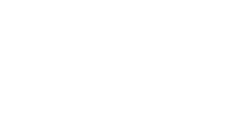 Project Software Logo